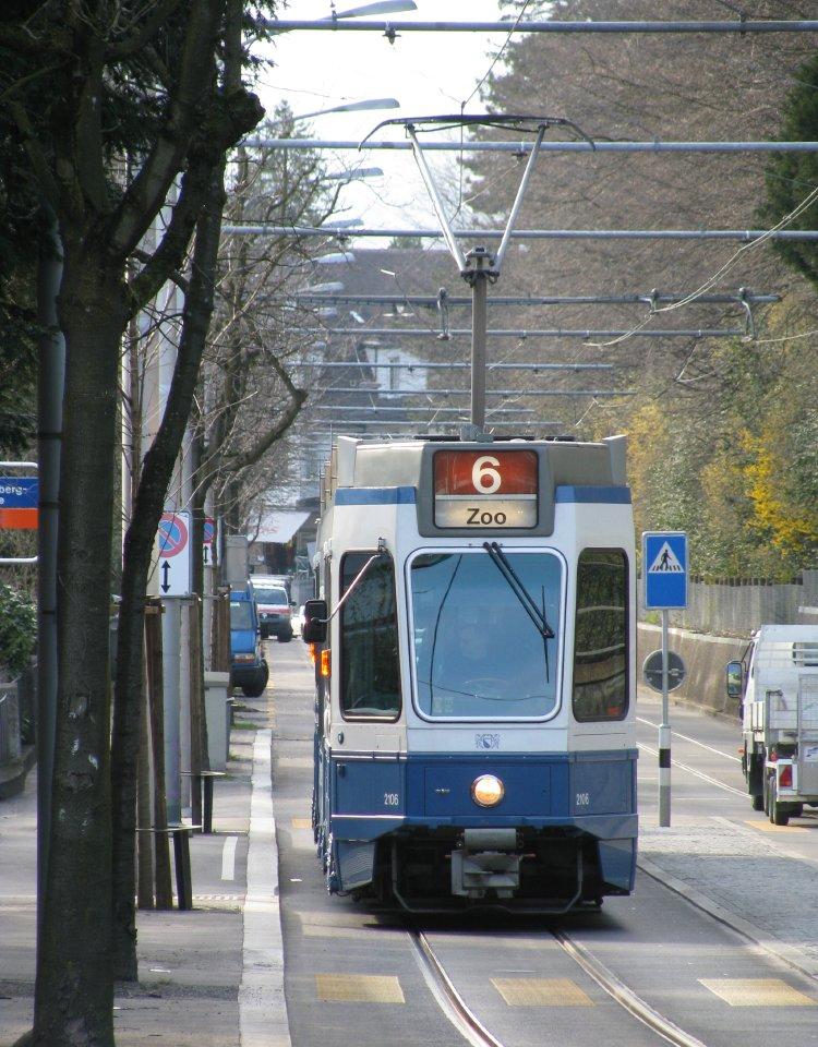 zoo tram